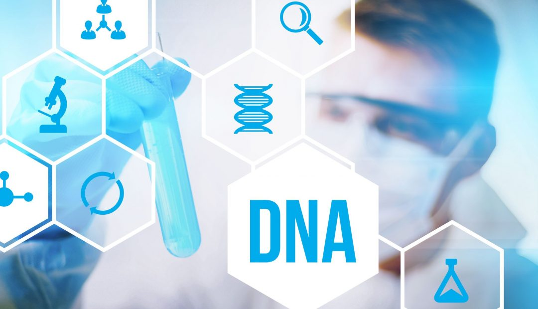 Ancestry Or 23AndMe – Which Is The Better DNA Testing Service?